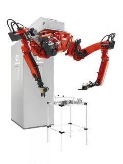 Dual Arm Robot