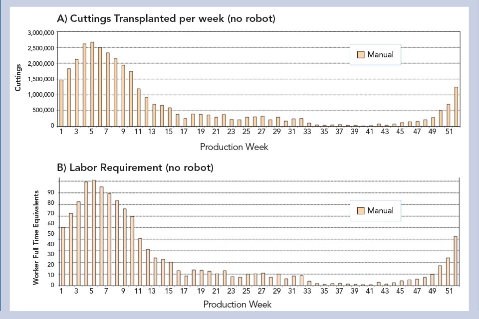 Cuttings-Transplanted-No-Robot-Chart.jpg