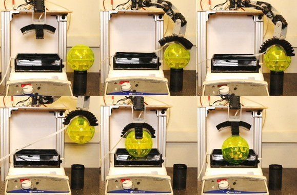Robot-arm-tastes-with-engineered-bacteria