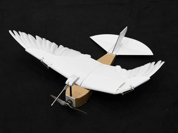 pigeonbot-2cc4c2e4c7afc63045d34092a7eadefe98b8b69b-s800-c85