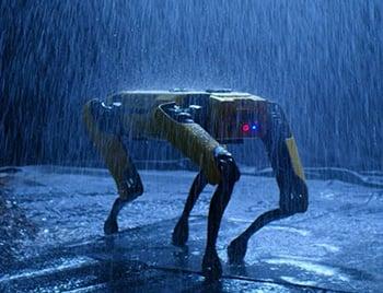 Boston Dynamics dog robot