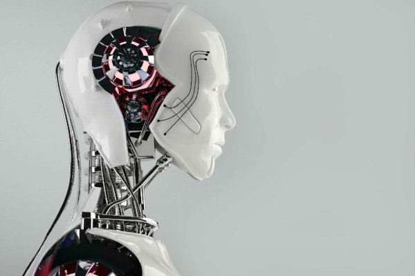 What's the Difference Between Robotics and Artificial Intelligence?