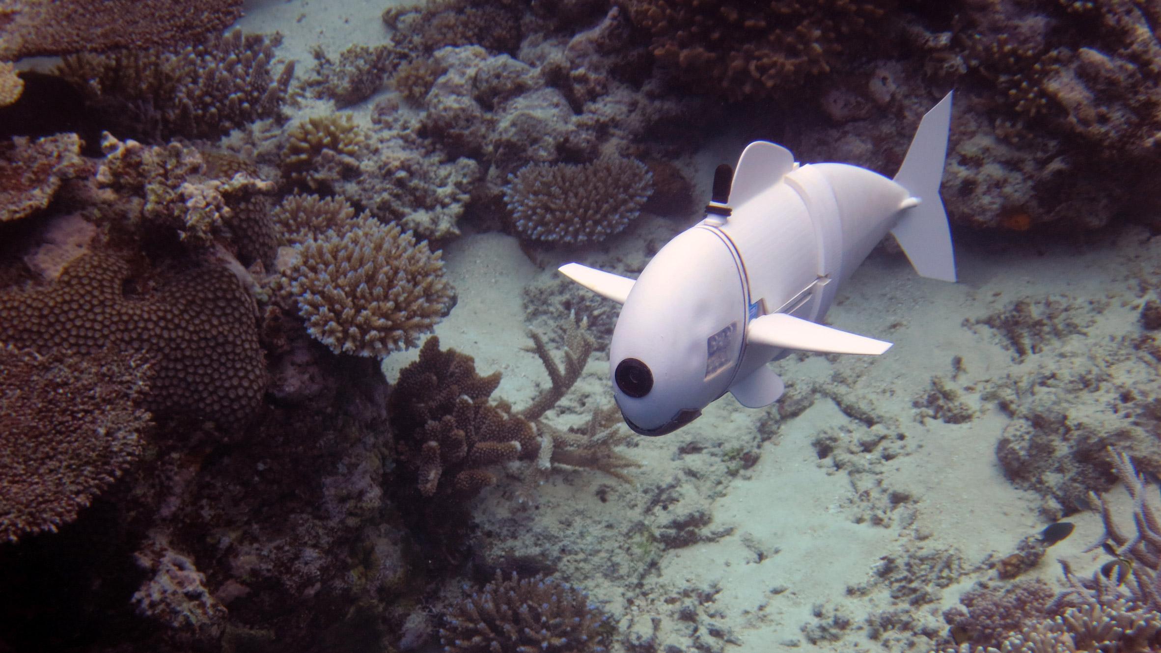mit-robotic-fish-design_dezeen_2364_hero-1
